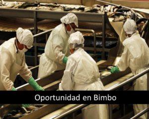 Oportunidad en Bimbo